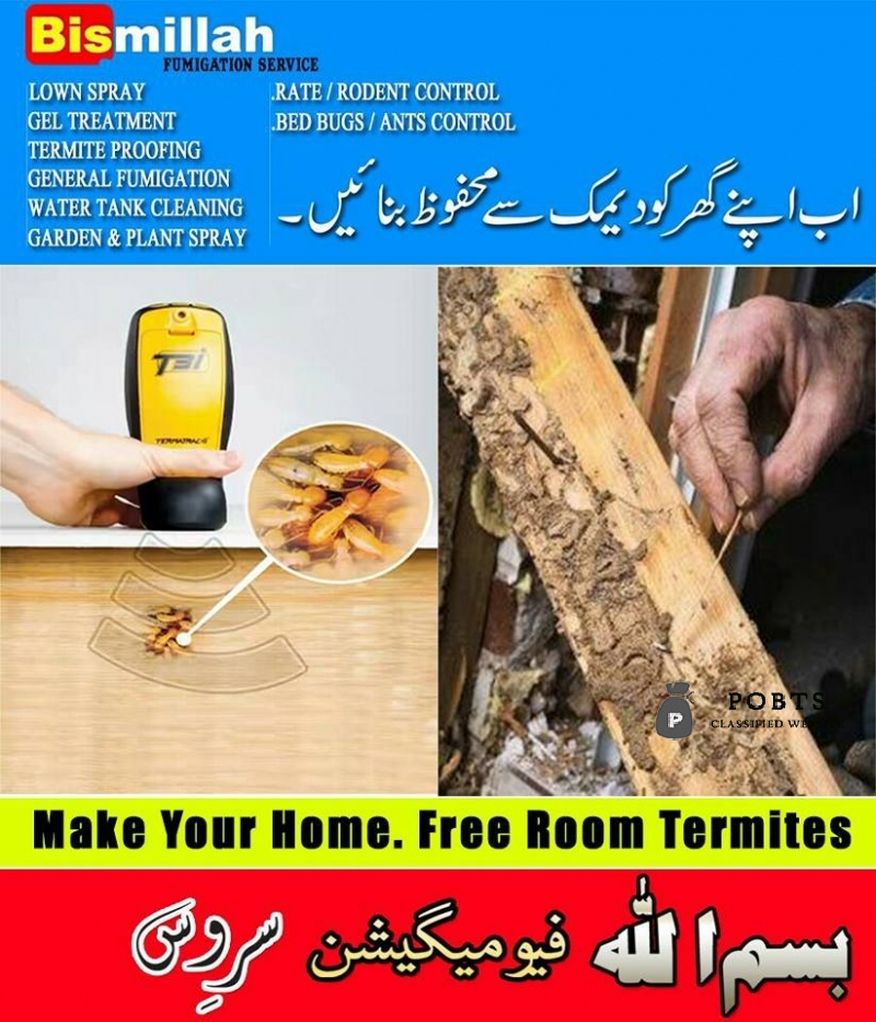 Bismillah fumigation Termite can damage your farniture call us