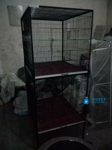35 cages and many boxes cargo