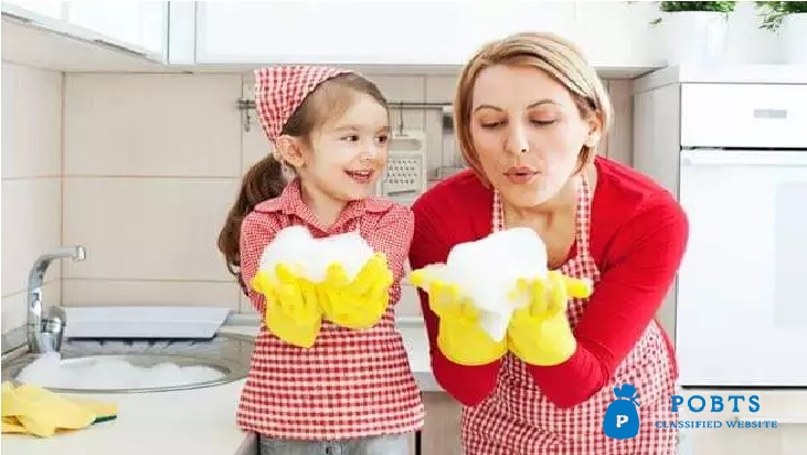 Domestic Servents Agency