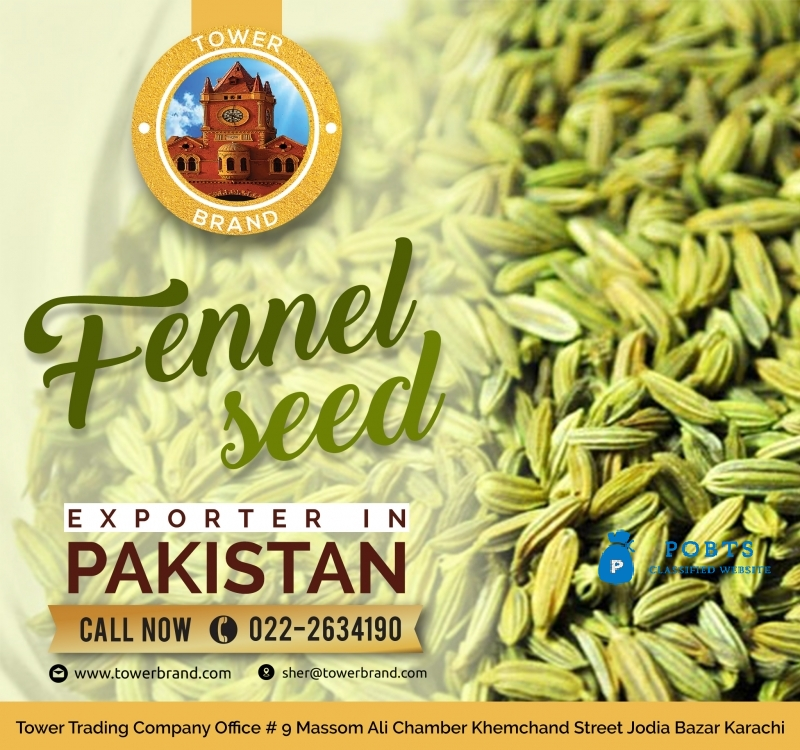 Fennel Seeds in Affordable Price