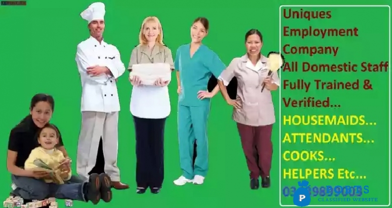Cook, Helper, Driver, Housemaids Etc All Staff Are Available Option
