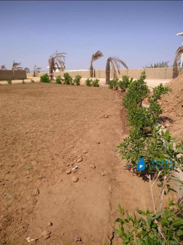 FARM HOUSES :Plots and Land on installment near ASF