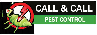 Fumigation services in Termite treatment