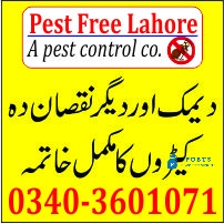 Pest Control Services in Lahore