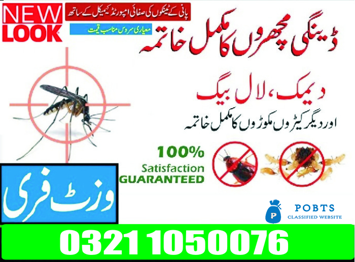 Sofa and Carpet Cleaning Services in Lahore