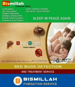 Bed bugs treatment by Bismillah Fumigation