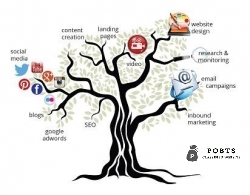 Digital / Social Media Marketing & Advertising Pakistan & International Marketing