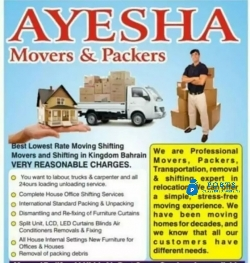 Packer and mover home shifting services
