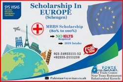 Scholarship in Europe (Sechengen)