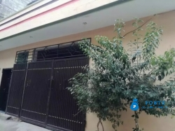 Single story house for rent