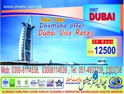 New Year Dubai Visit Visa Special Package