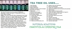 tea tree oil 10 20 30 ml