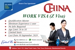 China Work Visa Z Visa