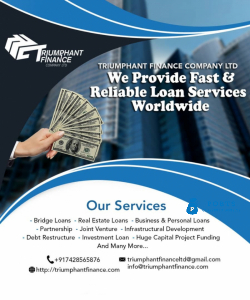 Investments, loans, project financing